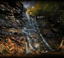 Chameleon Falls Autumn Foliage by Tim Holmes