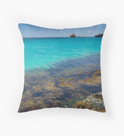 Life On the Reef Throw Pillow