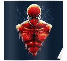 Spider-Man Bust Poster