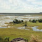 Ubirr Panaroma, Kakadu National Park, Northern Territory, Australia by Adrian Paul
