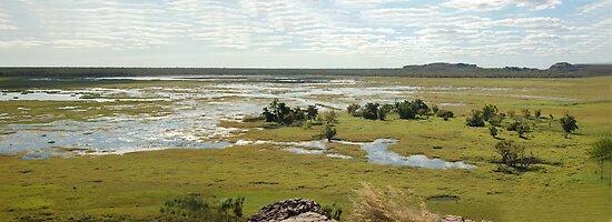 Ubirr Panaroma, Kakadu National Park, Northern Territory, Australia by Adrian Paul