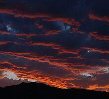 Sky Is Burning by Cara Fox