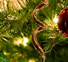 Merry Christmas To all RedBubblers ! by Pamela Hubbard