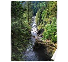 Snoqualmie River - Landscape Poster