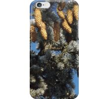 Blue Skies 001 iPhone Case/Skin