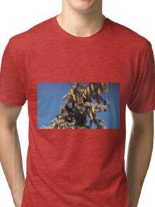 Blue Skies 001 Tri-blend T-Shirt