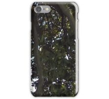 Blue Skies 004 iPhone Case/Skin