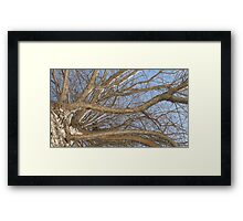 Blue Skies 008 Framed Print