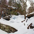 Winter Silences B. Reynolds Falls by Gene Walls