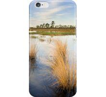 Scrub Marsh iPhone Case/Skin