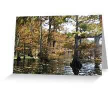 Visons of Lake Arthur # 3 Greeting Card