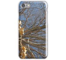 Blue Skies 010 iPhone Case/Skin