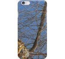 Blue Skies 011 iPhone Case/Skin