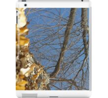Blue Skies 011 iPad Case/Skin
