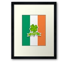 Clover on Irish flag for Patrick day Framed Print