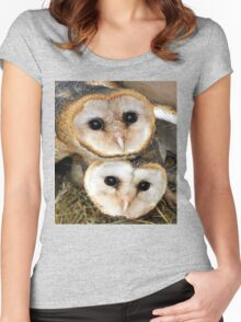 Cute baby barn owls  Women's Fitted Scoop T-Shirt