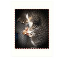 Bootsie And Her Christmas Toy Art Print