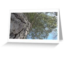 Blue Skies 017 Greeting Card