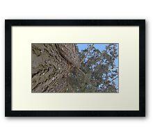 Blue Skies 018 Framed Print