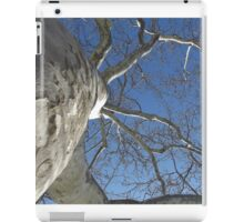 Blue Skies 019 iPad Case/Skin
