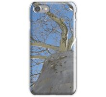 Blue Skies 020 iPhone Case/Skin