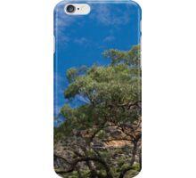 Grove Bluff iPhone Case/Skin