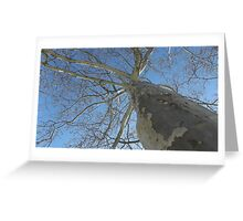 Blue Skies 021 Greeting Card