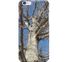 Blue Skies 022 iPhone Case/Skin