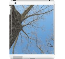 Blue Skies 023 iPad Case/Skin