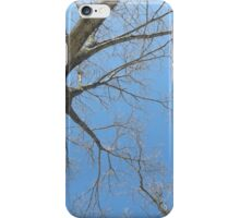 Blue Skies 023 iPhone Case/Skin