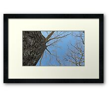 Blue Skies 023 Framed Print