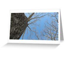 Blue Skies 023 Greeting Card