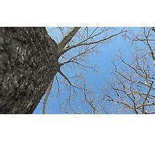 Blue Skies 023 Photographic Print