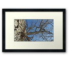 Blue Skies 025 Framed Print