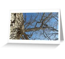 Blue Skies 025 Greeting Card
