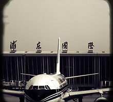 OLD SHANGHAI - Pudong International by Vanessa Sam