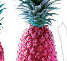 pink pineapples 2k15 Sticker