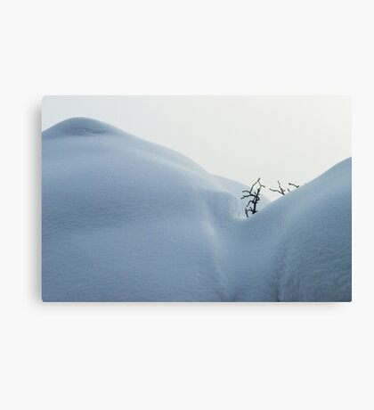 Clear Cool Valleys Canvas Print