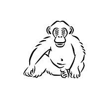 Monkey chimpanzee Photographic Print