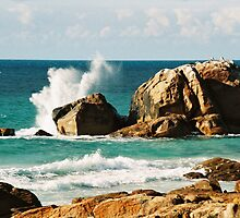 wave-splashed rocks  by wildplaces