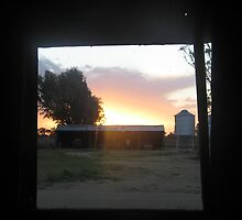 Shearing shed window by hannah93