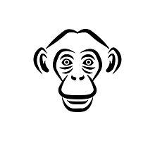Monkey chimpanzee head Photographic Print