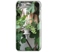 Grapevines And Vintage Lanterns iPhone Case/Skin