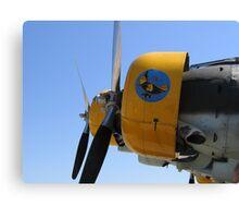 Junkers Sky Canvas Print