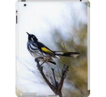Early Morning Sky Watcher iPad Case/Skin