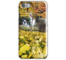 The delight of colored leaves iPhone Case/Skin