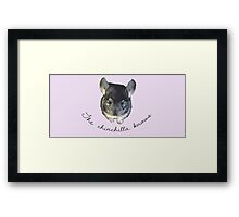 The chinchilla knows Framed Print