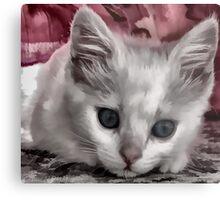 A Kitten Named Raiden Metal Print
