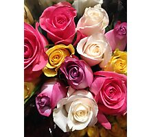 Multi Colored Roses Photographic Print