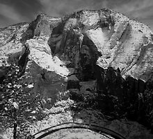 Zion Curve by LukasRandall